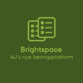 Link til Brightspace